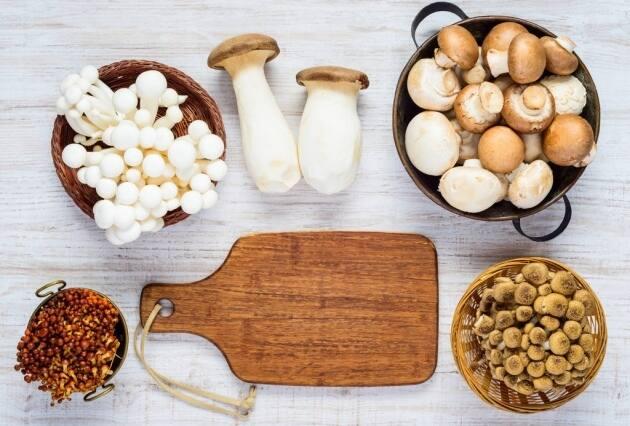 Setas De Cultivo, El Placer Del Otoño En El Plato Todo El Año |  Gastronosfera