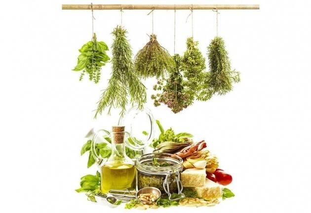 Cocinar con hierbas plantas y flores silvestres - Flores para cocinar ...