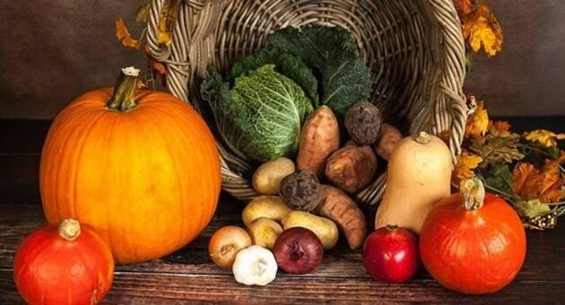 Cómo llenar la despensa de cara al otoño