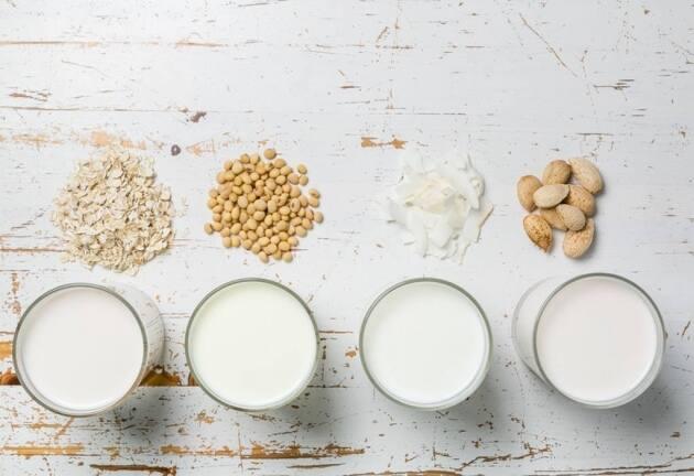 Diferentes tipos de leche