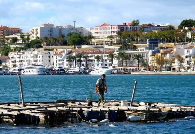El marisqueo en el puerto de Mahón