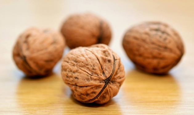 Nueces, superalimento dentro de una cáscara