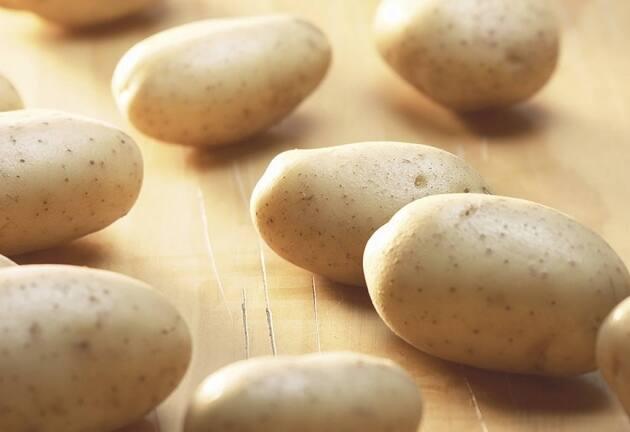 Patata de Álava, un tesoro bajo tierra con label