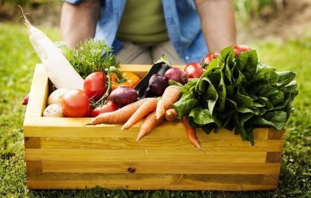 Verduras y hortalizas frescas