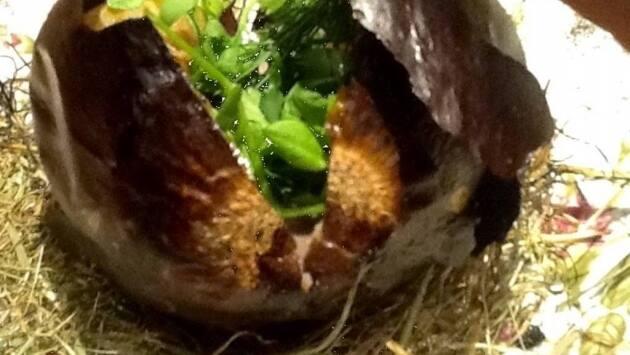 Cebolla negra con garum