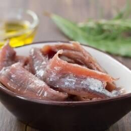 La anchoa del Cantábrico