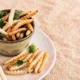 Comer insectos: guía para novatos y 4 recetas