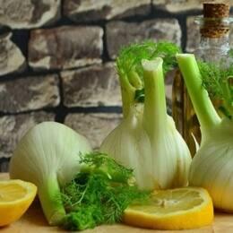 hinojo, hortaliza, historia del hinojo, usos culinarios