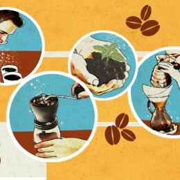 Proceso de producción del café