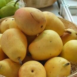 Dos recetas con pera Ercolini que querrás devorar