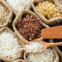 La vuelta al mundo en 10 platos de arroz