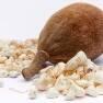 Baobab: el alimento de moda que ha llegado para quedarse