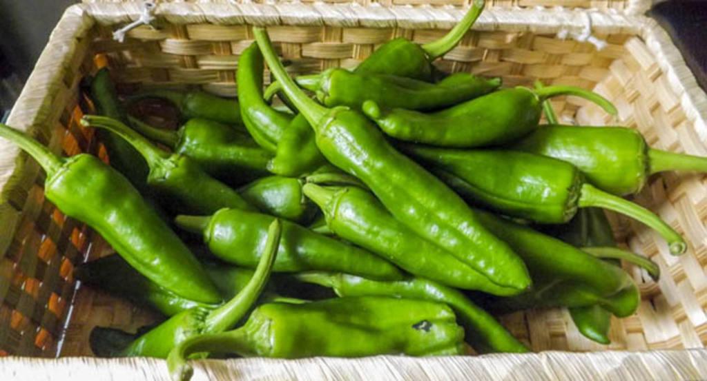 Pimientos verdes de gernika la sencillez hecha sabor - Como hacer pimientos verdes fritos ...